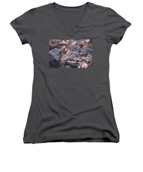 Dangerous Peekaboo  Women's V-Neck T-Shirt