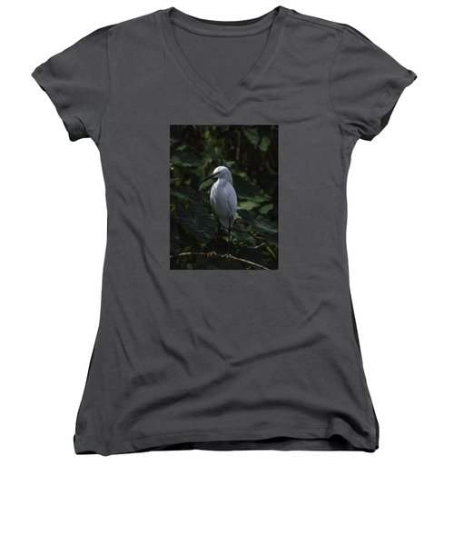 Women's V-Neck T-Shirt (Junior Cut) featuring the photograph Date Night by Rob Wilson