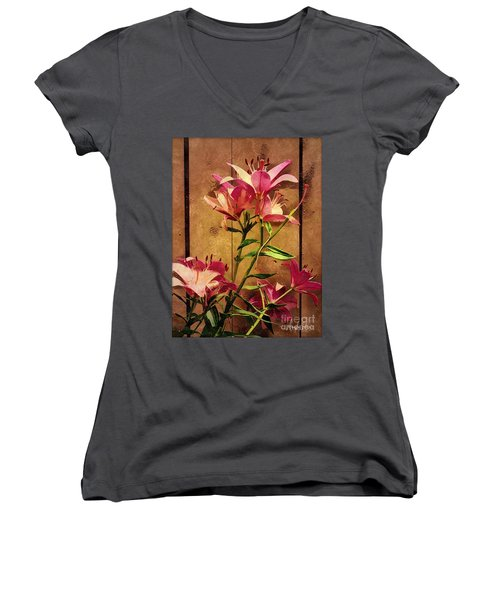 Dayliliys In  Guilford , Conn Women's V-Neck T-Shirt