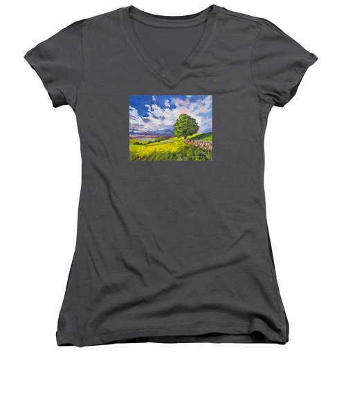 Dazzling Sky Pallet Knife Women's V-Neck T-Shirt