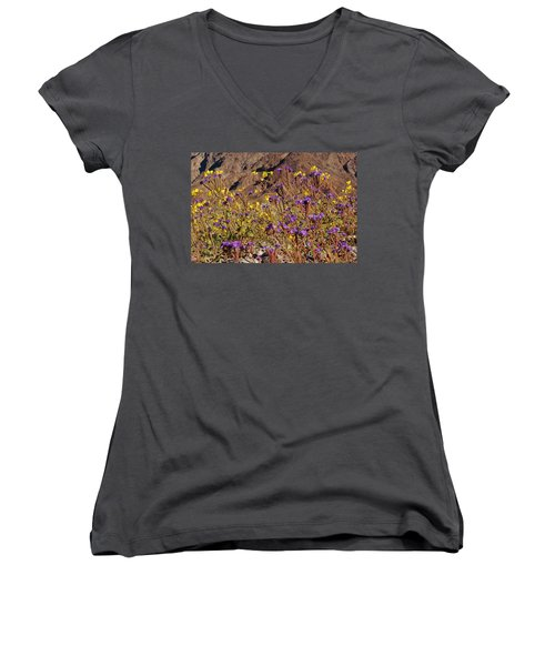 Death Valley Superbloom 401 Women's V-Neck T-Shirt
