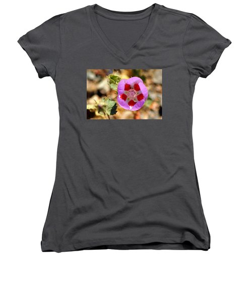 Death Valley Superbloom 504 Women's V-Neck T-Shirt