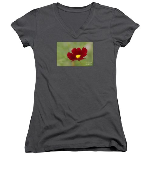 Deep In Red Women's V-Neck T-Shirt