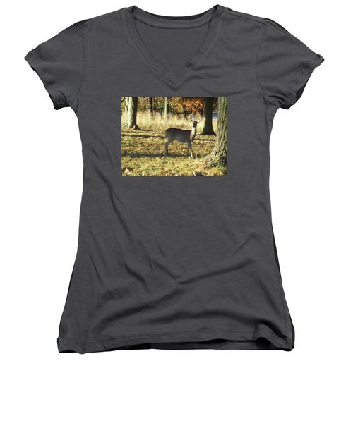 Deer At Valley Forge Women's V-Neck T-Shirt