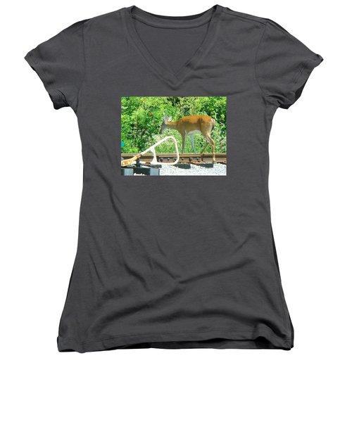 Deer Crossing Women's V-Neck T-Shirt (Junior Cut) by J R Seymour