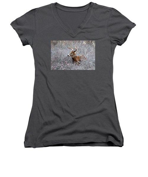 Deer On A Frosty Morning  Women's V-Neck T-Shirt (Junior Cut) by Nancy Landry