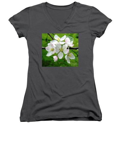 Delicate Apple Blossoms Women's V-Neck T-Shirt