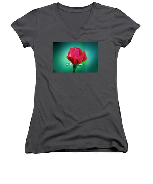 Delicate Rose Petals Women's V-Neck