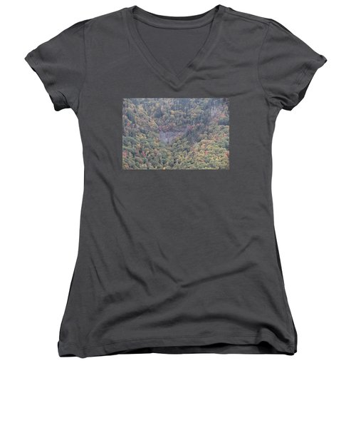 Dense Woods Women's V-Neck T-Shirt