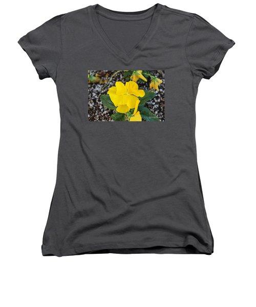 Desert Beauty Women's V-Neck T-Shirt (Junior Cut) by Roberta Byram