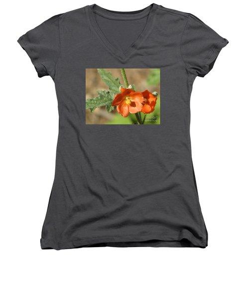 Desert Globemallow Bloom 220 Women's V-Neck T-Shirt