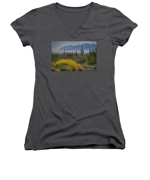 Desert Springtime Women's V-Neck T-Shirt (Junior Cut) by Anne Rodkin