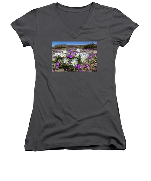 Women's V-Neck T-Shirt (Junior Cut) featuring the photograph Desert Super Bloom 2017 by Peter Tellone