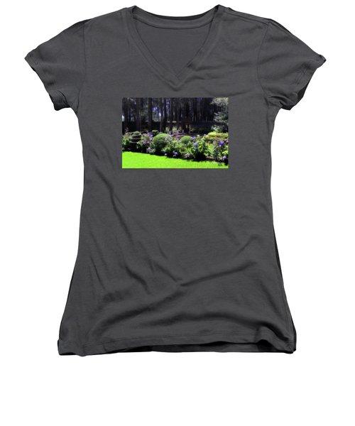 Desierto De Los Leones 1 Women's V-Neck T-Shirt