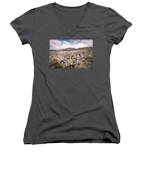 Women's V-Neck T-Shirt (Junior Cut) featuring the photograph Desolation by Andrew Matwijec
