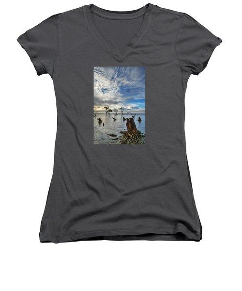 Desolation Women's V-Neck T-Shirt (Junior Cut) by Robert Charity