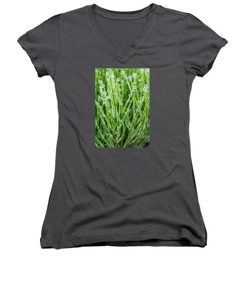 Dew Drop Women's V-Neck T-Shirt (Junior Cut) by Cynthia Traun