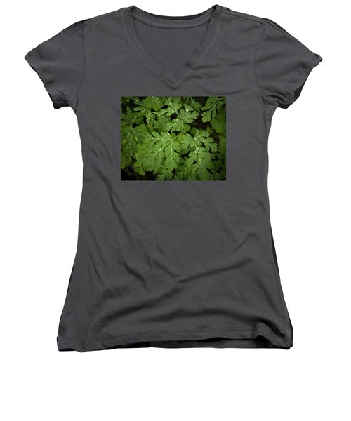 Dewey Leaves Women's V-Neck