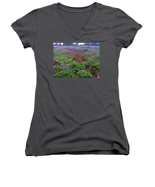Dickerman Floral Meadow Women's V-Neck (Athletic Fit)