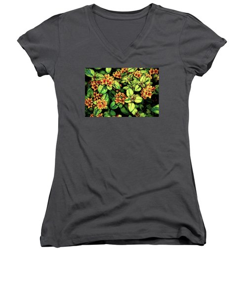 Digital Painting Quilted Garden Flowers 2563 Dp_2 Women's V-Neck T-Shirt