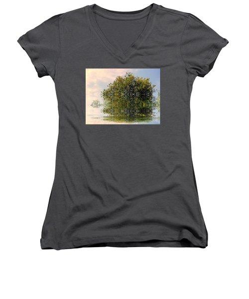 Dimensional Women's V-Neck T-Shirt (Junior Cut) by Elfriede Fulda