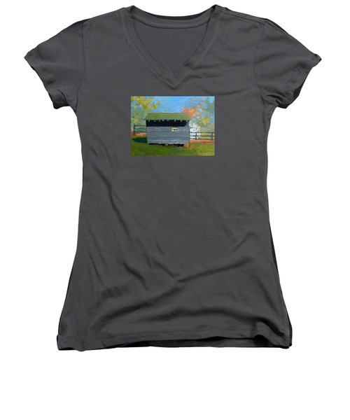Dogwood Farm Shed Women's V-Neck T-Shirt (Junior Cut) by Catherine Twomey