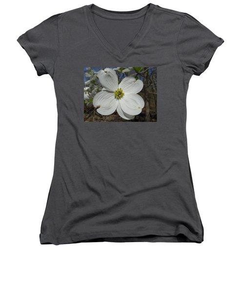 Dogwood Women's V-Neck T-Shirt