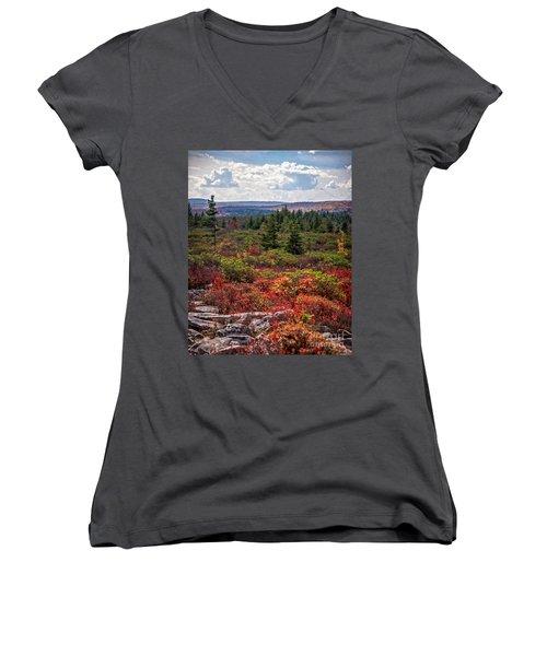 Dolly Sods Wilderness In Autumn 4273 Women's V-Neck