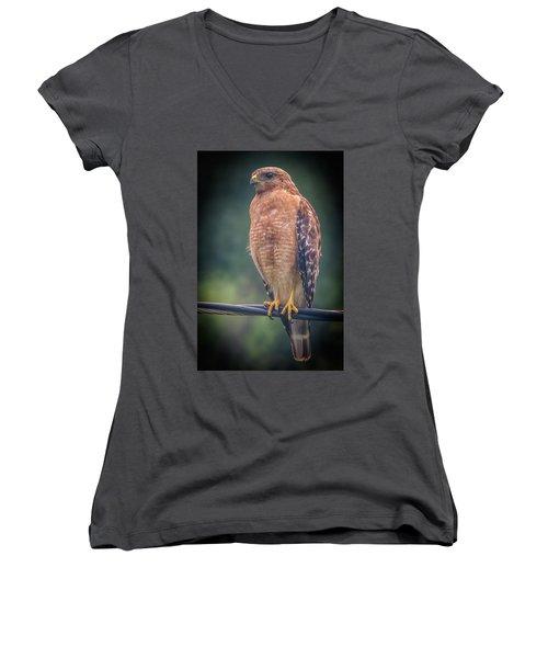 Women's V-Neck featuring the photograph Dominique The Hawk by Michael Sussman