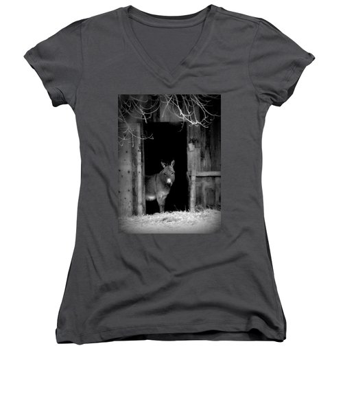 Donkey In The Doorway Women's V-Neck T-Shirt (Junior Cut) by Michael Dohnalek