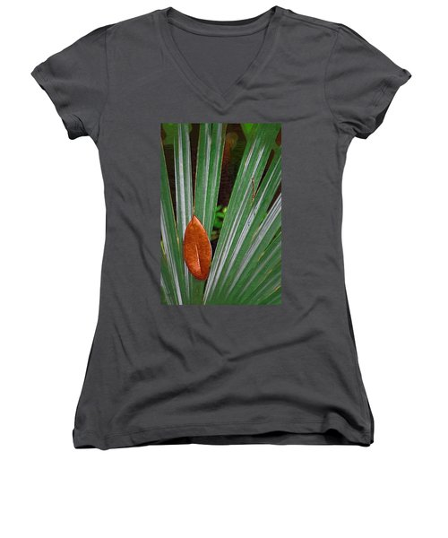 Women's V-Neck T-Shirt (Junior Cut) featuring the photograph Don't Leaf by Donna Bentley