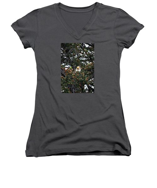 Don't Let Him Fool You He Might Be Blinking But He's Still Watching Me Women's V-Neck T-Shirt (Junior Cut) by Dacia Doroff