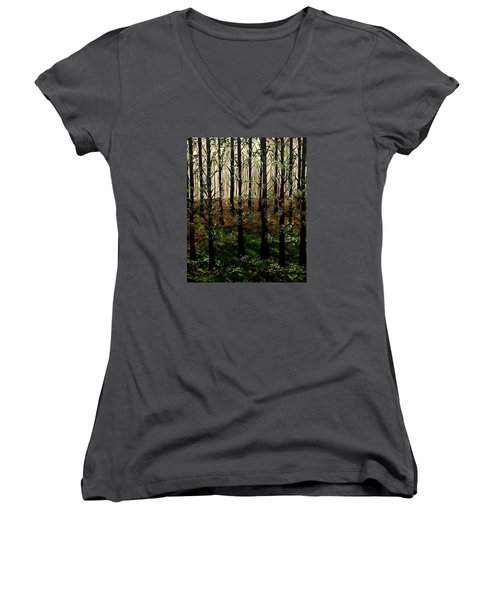 Don't Touch Down Women's V-Neck T-Shirt (Junior Cut) by Lisa Aerts