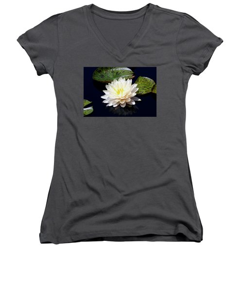 Dotty White Lotus And Lily Pads 0030 Dlw_h_2 Women's V-Neck T-Shirt