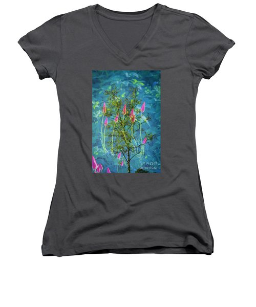 Close Encounters-2 Women's V-Neck T-Shirt