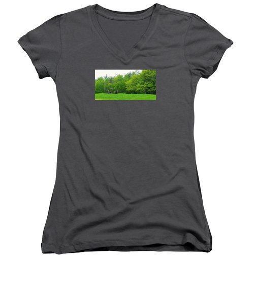 Down On The Farm Women's V-Neck (Athletic Fit)