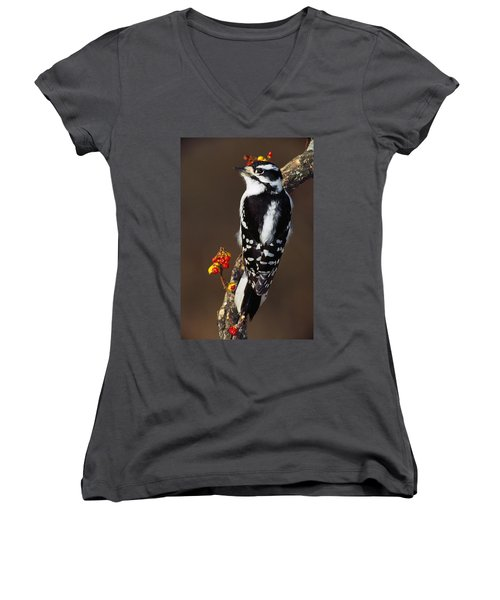 Downy Woodpecker On Tree Branch Women's V-Neck T-Shirt (Junior Cut) by Panoramic Images