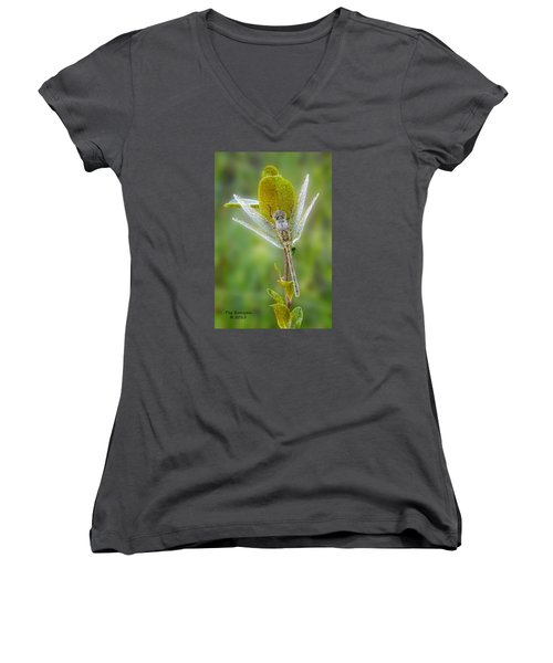 Dragon Fly In The Dew Women's V-Neck T-Shirt