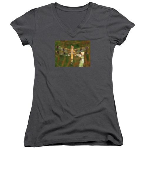 Women's V-Neck T-Shirt (Junior Cut) featuring the photograph Painted Skimmer Dragonfly by Phyllis Beiser