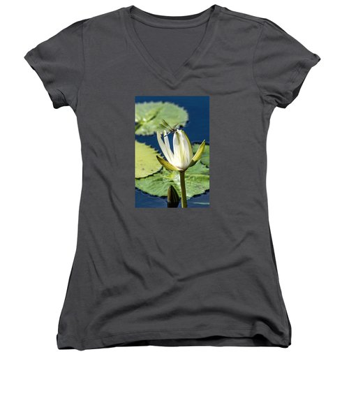 Dragonfly Women's V-Neck T-Shirt (Junior Cut) by Susi Stroud