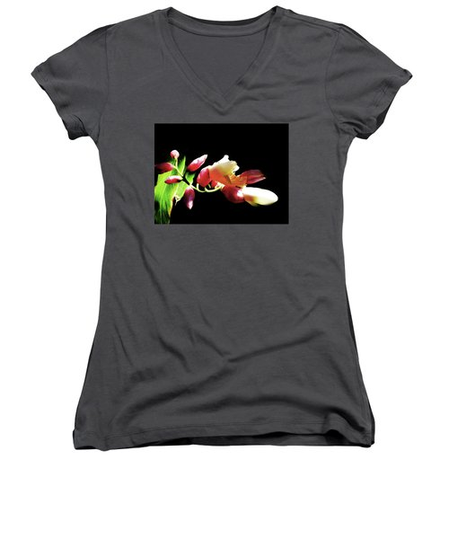 Dramatic Oriental Orchid Women's V-Neck T-Shirt (Junior Cut) by Tina M Wenger