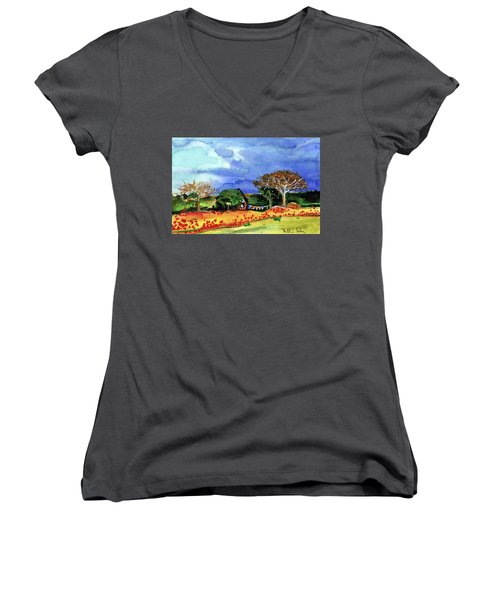Women's V-Neck T-Shirt featuring the painting Dreaming Of Malawi by Dora Hathazi Mendes