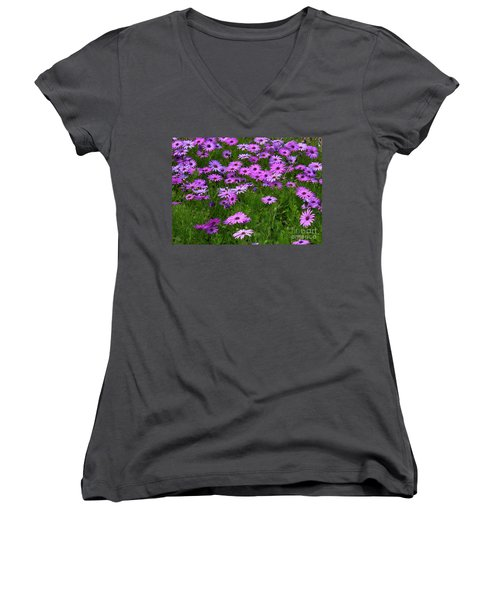 Dreaming Of Purple Daisies  Women's V-Neck T-Shirt
