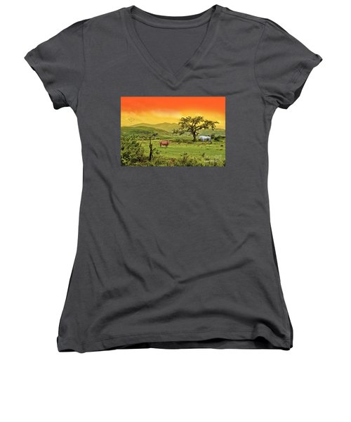 Women's V-Neck T-Shirt (Junior Cut) featuring the photograph Dreamland by Charuhas Images