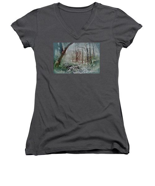 Dreamy Snow Women's V-Neck T-Shirt
