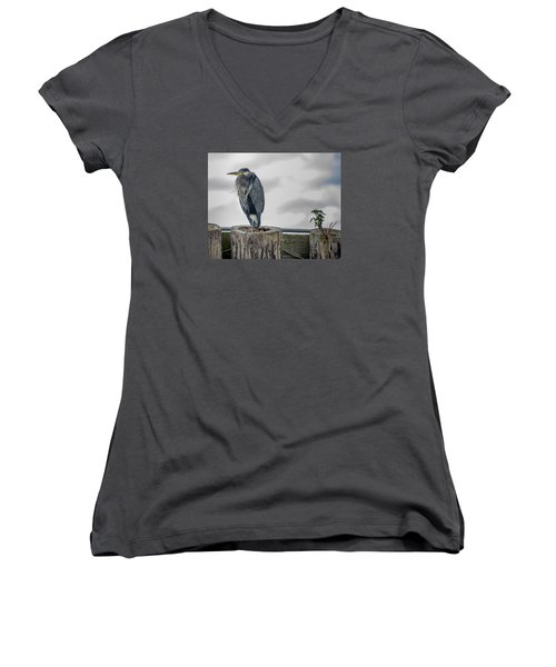 Dreay Day At The Ocean Women's V-Neck T-Shirt (Junior Cut) by Jerry Cahill