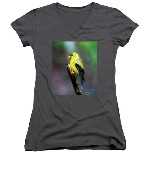 Dressed To Kill Women's V-Neck (Athletic Fit)