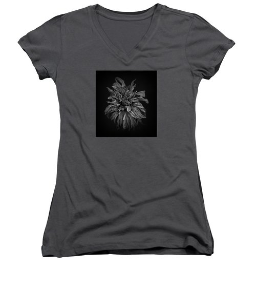 Dried Dahlia 2 Women's V-Neck (Athletic Fit)