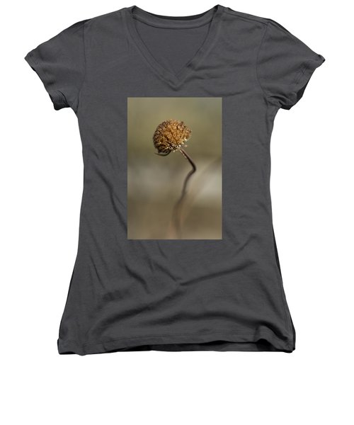 Dried Flower Close-up Women's V-Neck (Athletic Fit)