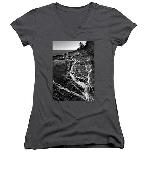 Driftwood Tree, La Verna Preserve, Bristol, Maine  -20999-30003 Women's V-Neck